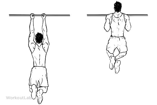 Close_Grip_Pullup_Chinup_M_WorkoutLabs