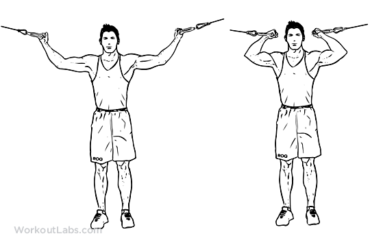 Overhead_Cable_Curl