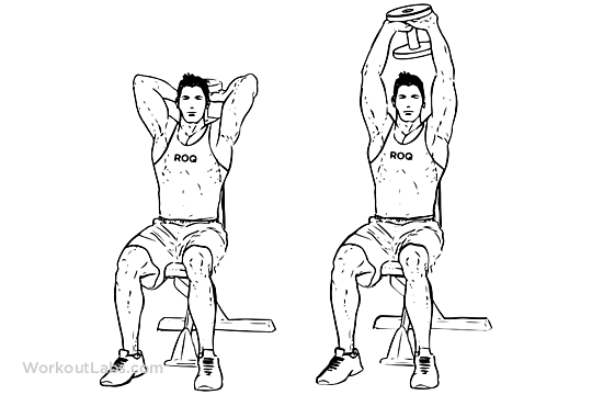 Seated_Tricep_Press_M_WorkoutLabs